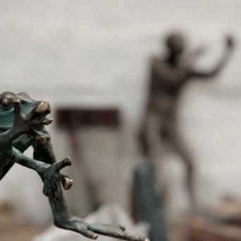 Frog & Bushman
