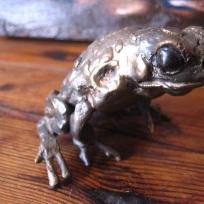 Frog single